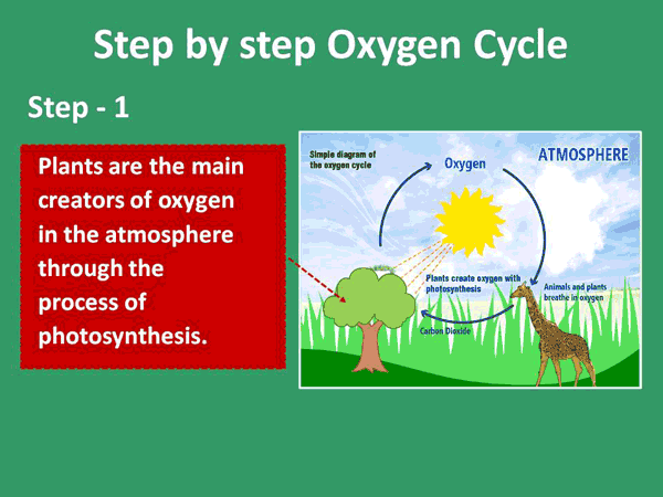 How To Explain The Greenhouse Effect To Kids With Manual Guide